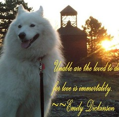 Yukonmemorial