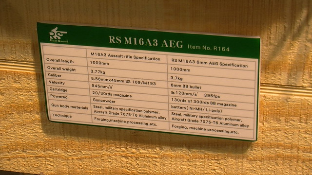 M16 AEG Details Card from Real Sword
