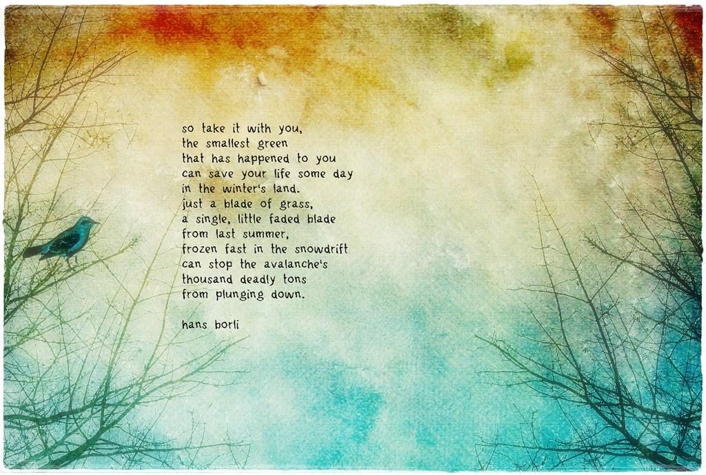 ruby blossom background and hans borli poem   using ...