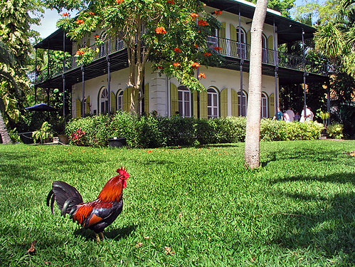The Hemingway House | by keyweststeamplant