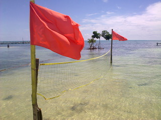 Red Flags | by V31S70