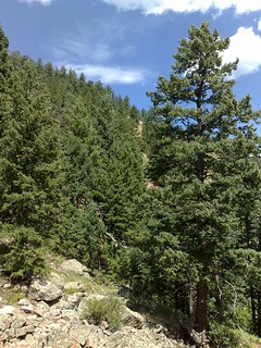 Chautauqua Park, Boulder Colorado   by Kevglobal