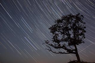 Stars | by Jordan Hackworth