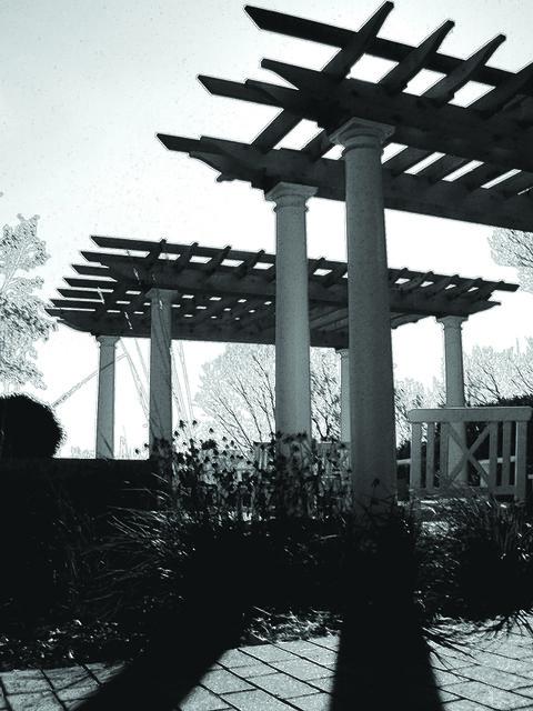 Switzer's Nursery & Landscaping - the Art Arbours... black & white