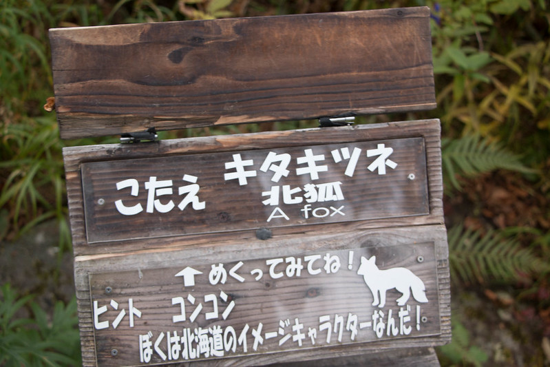 20150918-大雪山黒岳-0065.jpg