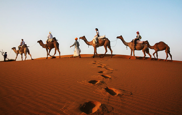 camels and tourists in Thar desert