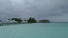 Television Maldives