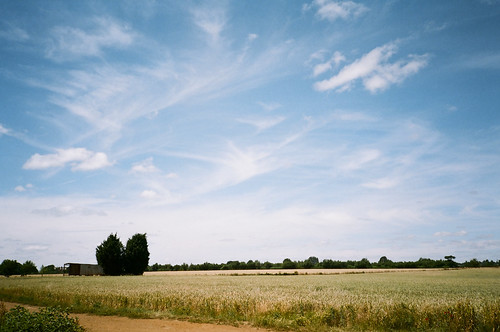 Big skies | by Alex Light