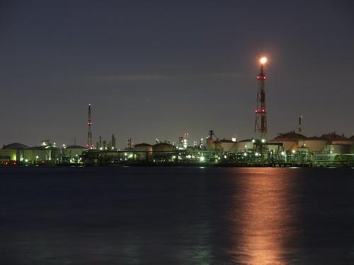 Oil plant | by elminium