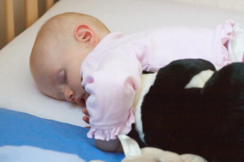 Sleeping with Jessie Cat