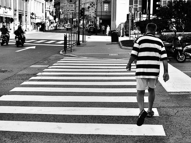 Zebra-man crossing