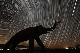 Search for Perseids | by john_h_moore