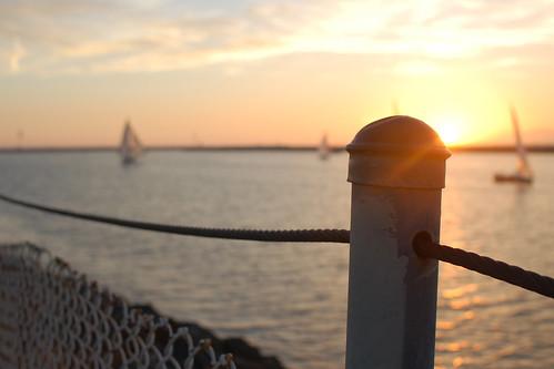 sunset water beautiful fence sailing flare playadelrey hff twofer flarefriday fencefriday fenchfriday