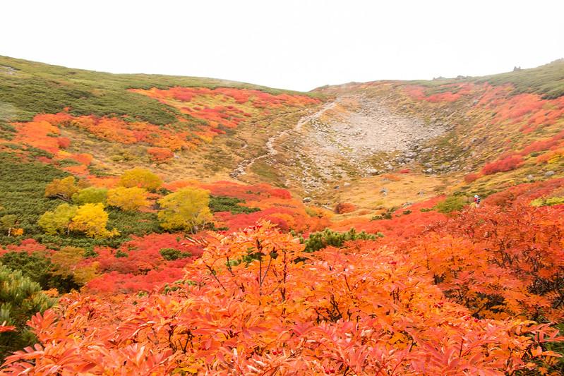 20150918-大雪山黒岳-0765.jpg