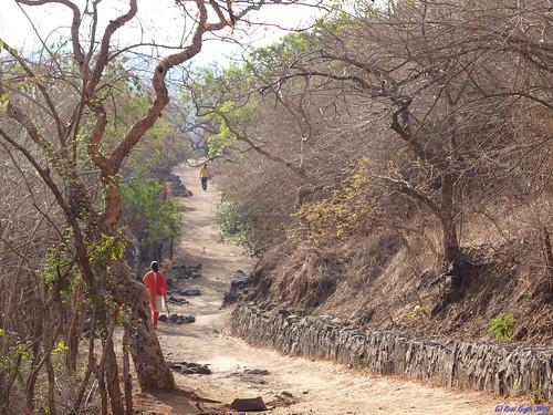 india bare dry olympus hills walkways summertime pune twisty chaturshringi e520