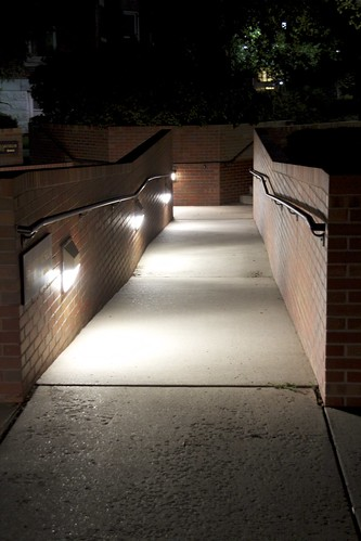 Day 195 (2010.07.15) - Lighted Path