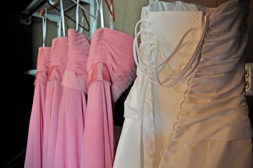 The dresses   by sarahsampsel