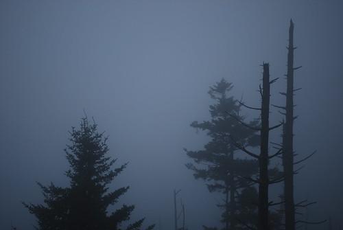 fog III | by ▲tabor▲