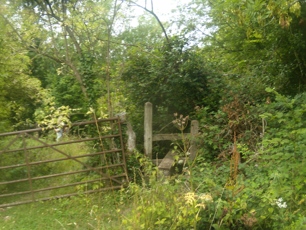 Broken down gate. I went past this with a broken down gait. Rowlands CAstle Circular