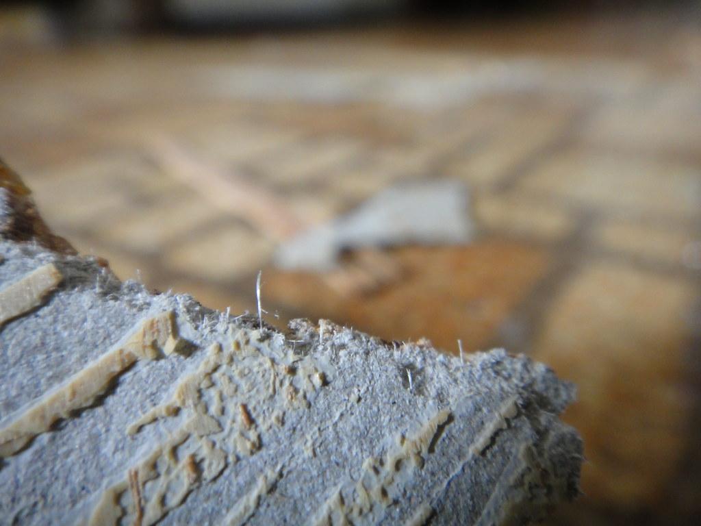 Asbestos Fibers In Sheet Flooring Detail View Of Asbestos Flickr