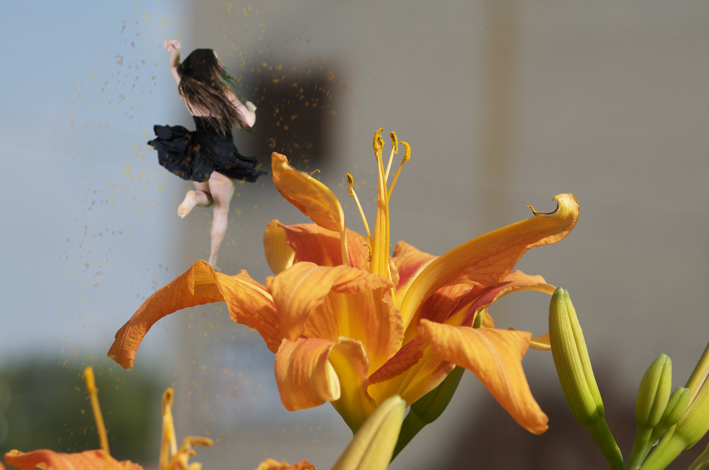 Lily Fairy Scattering Color Dust by nataraj_hauser / eyeDance