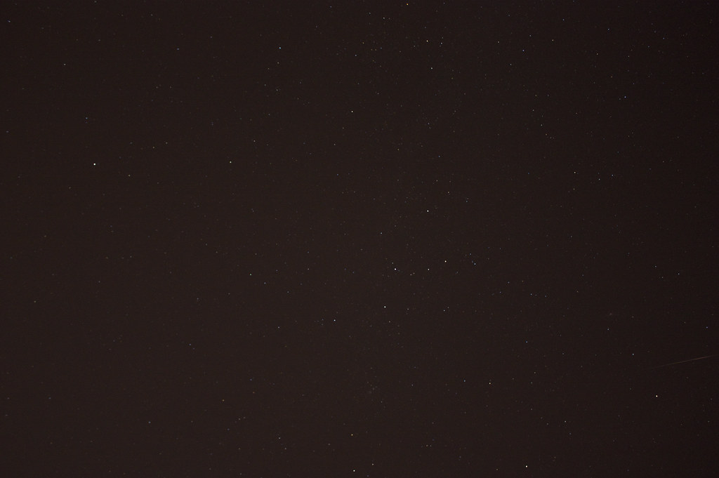 Possible Perseid Meteor