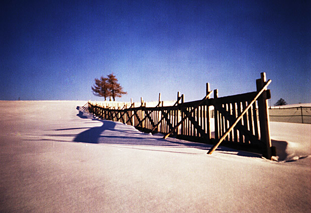 snow fence - Bavaria Germany (pinhole)