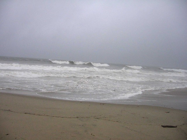 Happy New Year: Flood Watch/High Surf Advisory