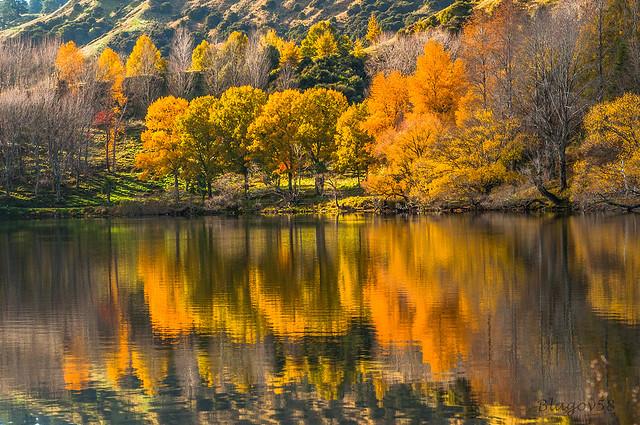 autumn at Lake Tutira
