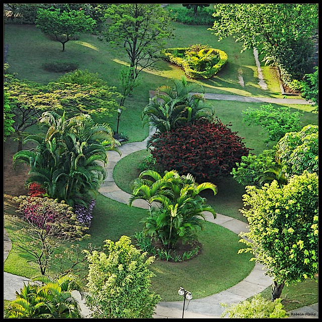 The grass of neighbor is greener ...
