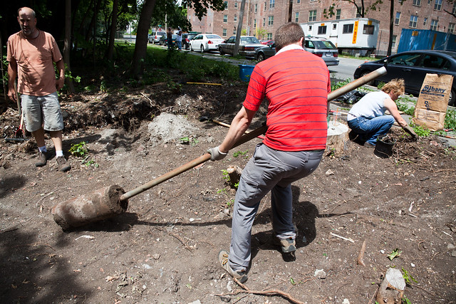 GSCA Vacant Lot Project (CR Permaculture Guild) - Albany, NY - 10, Jul - 09