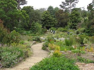 SF Botanical garden | by Buddha Dog