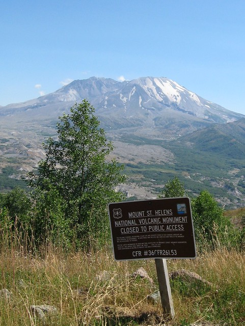 Research Area At Mt St Helens