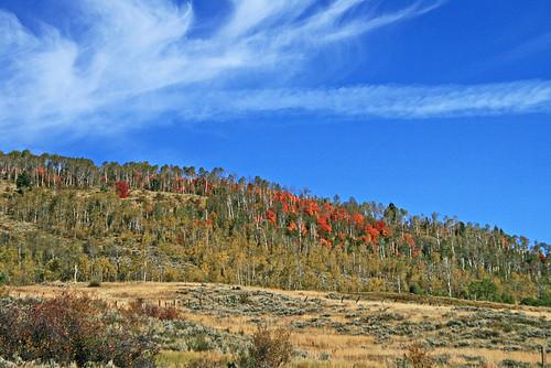autumn 15fav usa fall utah maple logancanyon us89 cachecounty 100vistas instantfave nopin orig:file=20100915eos30d104761000