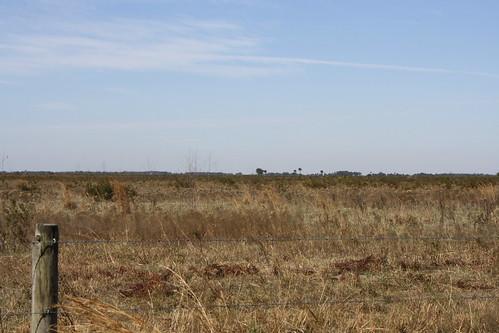 park state florida trail prairie february kissimmee preserver 2011
