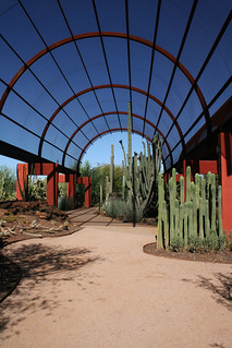 Day 176: Hall of Cacti | by a.dombrowski