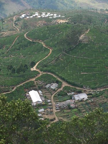 travel mountain asia asien factory view tea country hill hills sri lanka asie srilanka hillcountry range 2010 haputale img0876 liptonseat dambatenne dembatenne