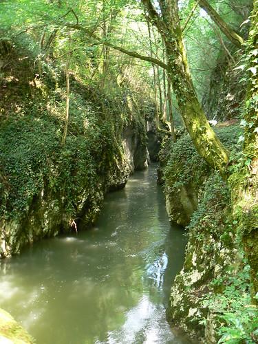 wood trees forest river geotagged nationalpark rocks path stones tourists romania roumanie rumunsko rumänien românia caraşseverin caraşova parculnaţional geo:lat=45198759 geo:lon=21912197