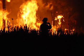 Wildfire   by USFWS/Southeast