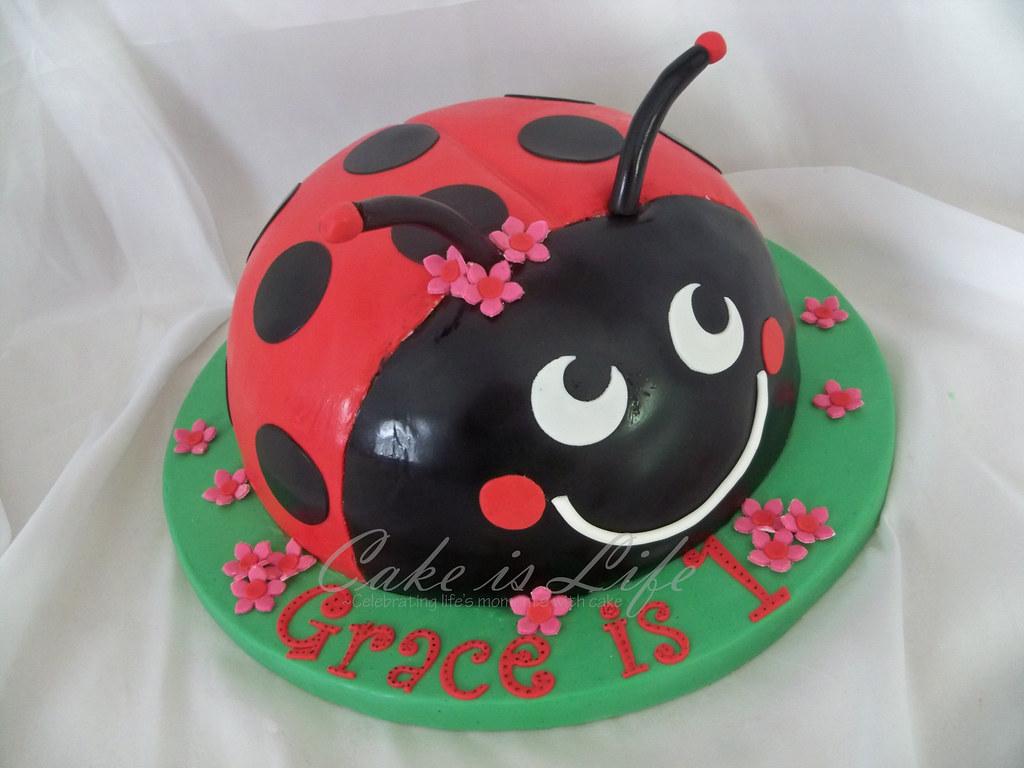 Strange Ladybug Birthday Cake 08 2010 A Ladybug Inspired By Someo Flickr Personalised Birthday Cards Veneteletsinfo