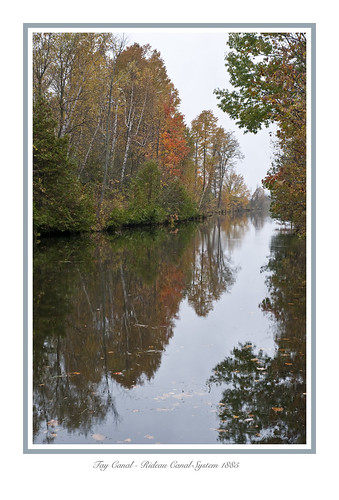 autumn trees colour water leaves rideaucanal taycanal