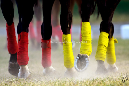 pakistan red horse cup yellow canon shoe memorial tournament final jockey ponies horseshoe dust punjab rider polo col poloponies rawalpindi horserider pakistanarmy 40d safdar concordians poloinpakistan colsafdarmemorialcuppolotournamentfinal