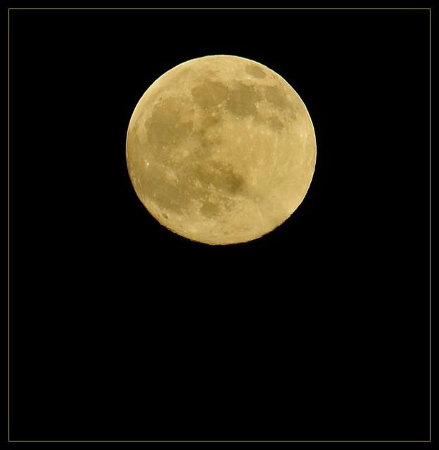 Full Moon 11/20/10