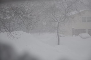 Snowpocalypse Chicago Snowmageddon 2011 | by b0jangles