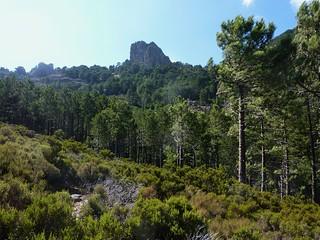 Le Castedducciu vue d'une éminence en RD du Finicione