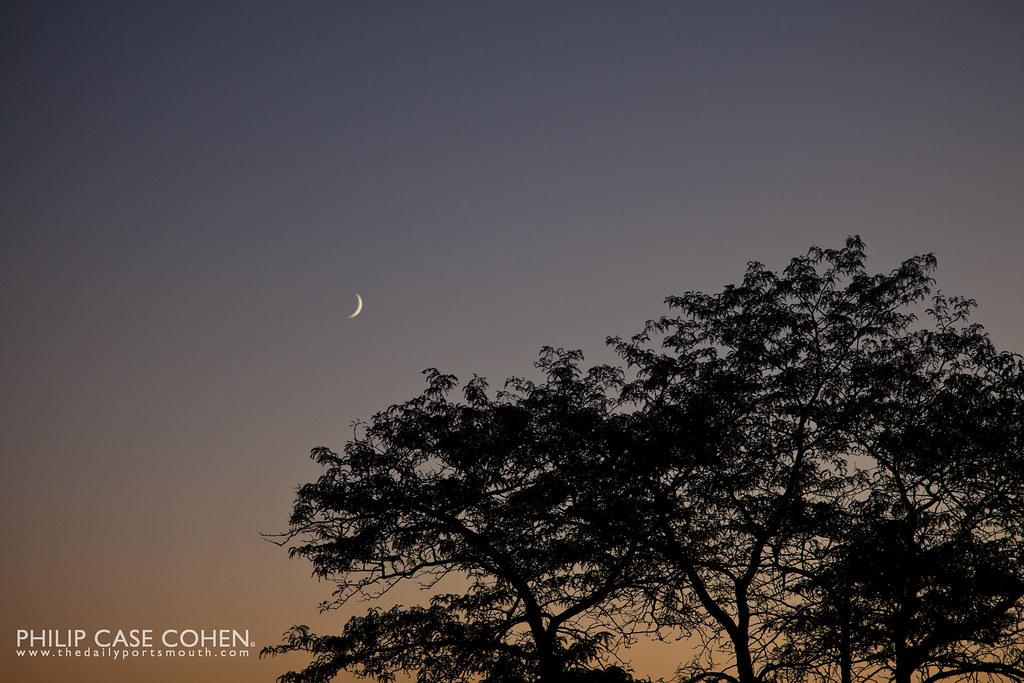 Moonrise by Philip Case Cohen
