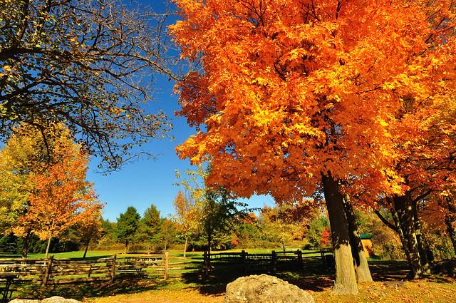Crawford Lake, Ontario