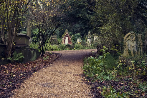 Highgate Old Cemetery | by vintagedept