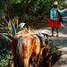 Camino Inca, foto: Eva Trnková