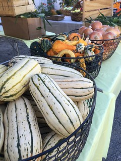 Squash, gourds, onions | by Oregon Department of Agriculture